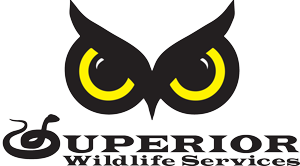 superiorwildlife352